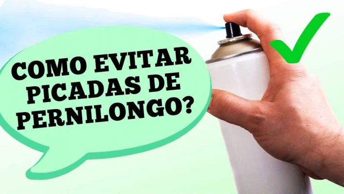 5 MANEIRAS PARA EVITAR PICADAS DE PERNILONGOS
