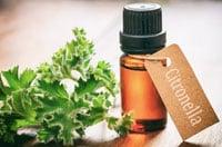 Os repelentes naturais a base de Citronela e outros óleos essenciais (mistura de plantas) tem ação repelente
